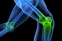 cartilage_health.jpg