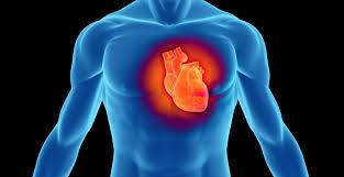 heart_health2.jpg