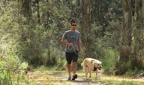 man_walking_with_dog_in_park.jpg